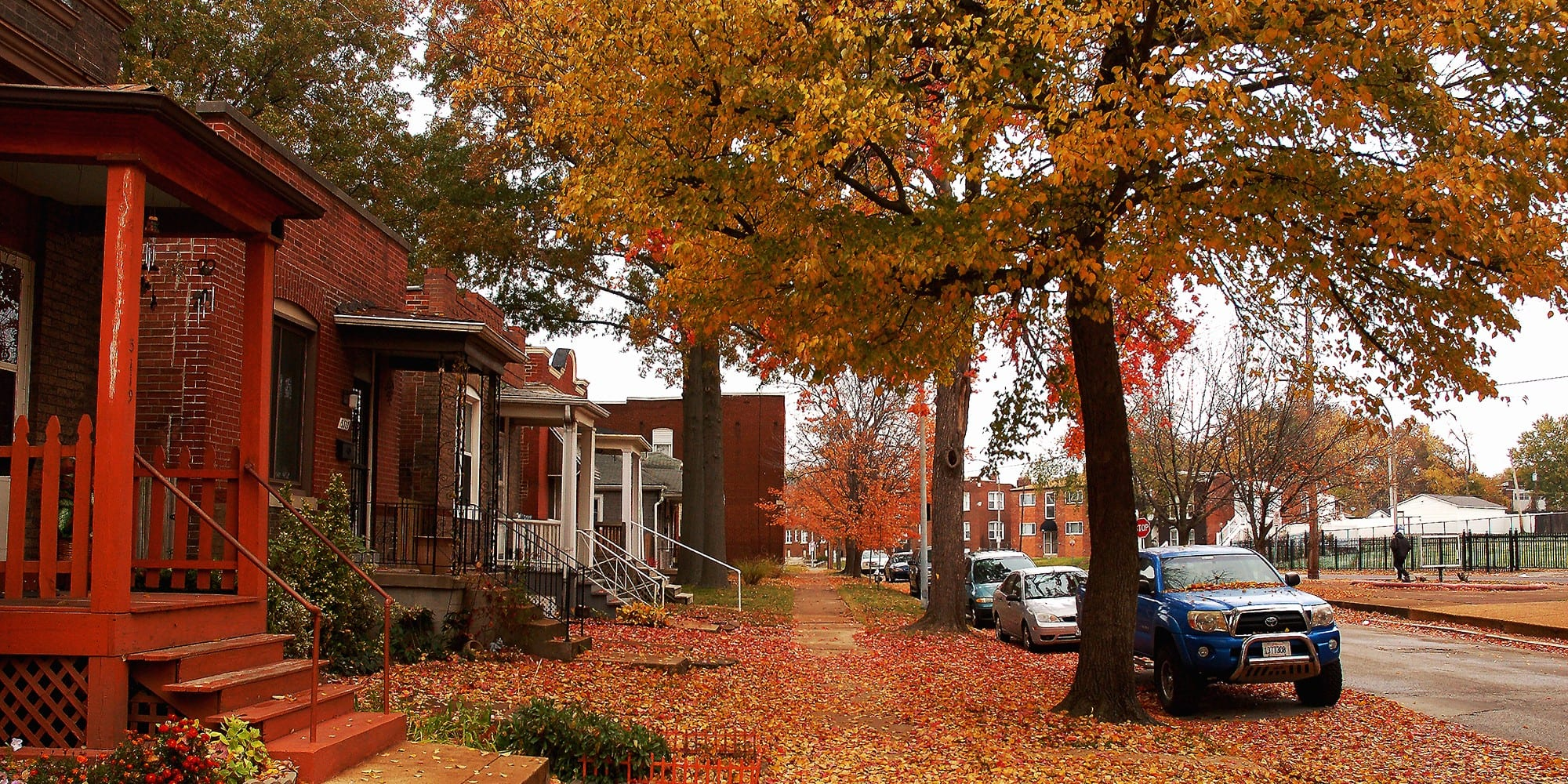 Vermont Ave. in Dutchtown with autumn leaves. Photo by Nick Findley.