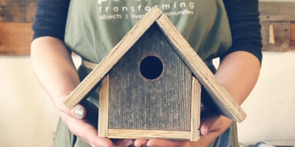 DIY Bird House Workshop