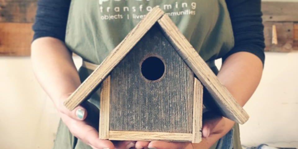 DIY Bird House Workshop